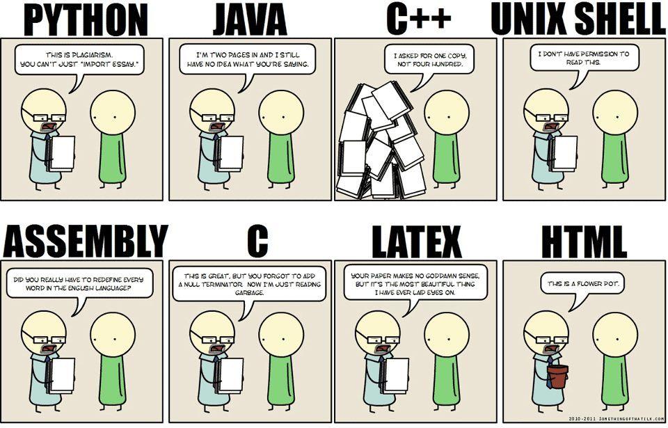programming thesis
