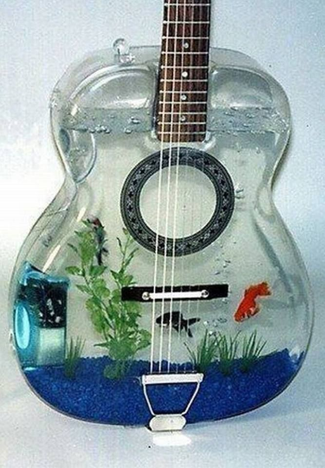 Very cool fish tank fish stuff pinterest for Awesome fish tanks