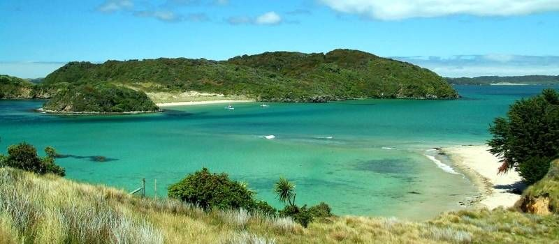 Stewart Island New Zealand  city images : Stewart Island New Zealand | Go while you can.. | Pinterest