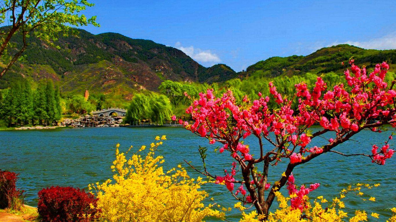 kashmir paradise on earth essays