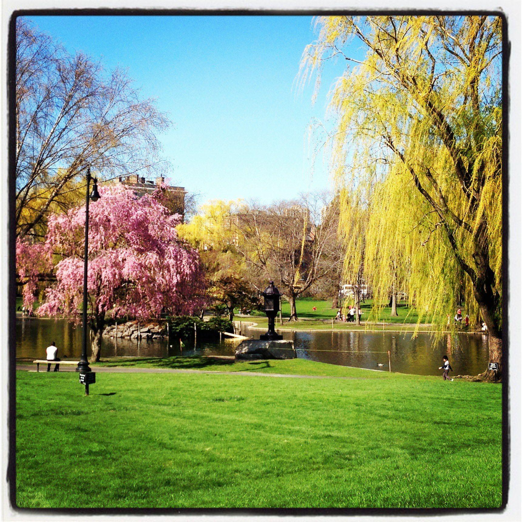 Boston Public Garden Boston Massachusetts Pinterest