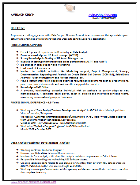 Resume Sample For Experienced Professional