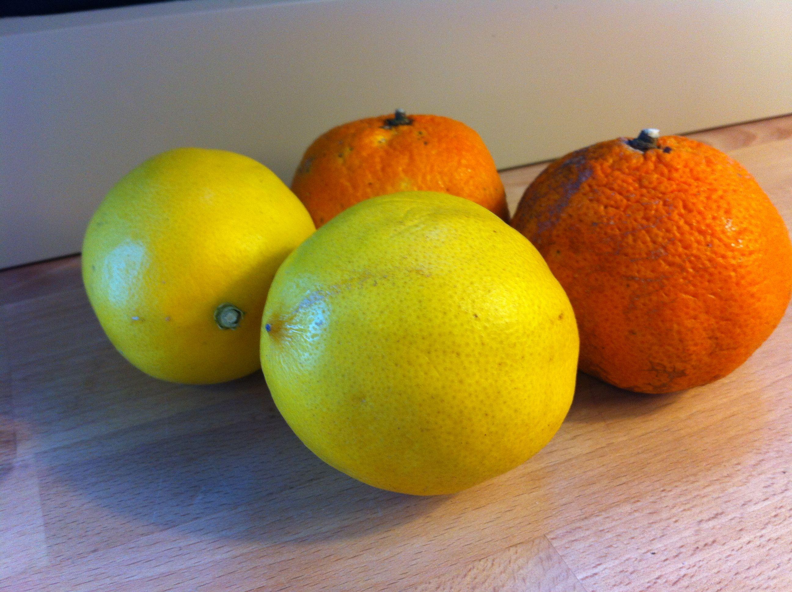 Meyer lemons & Satsuma oranges | Recipes - Meyer Lemon | Pinterest