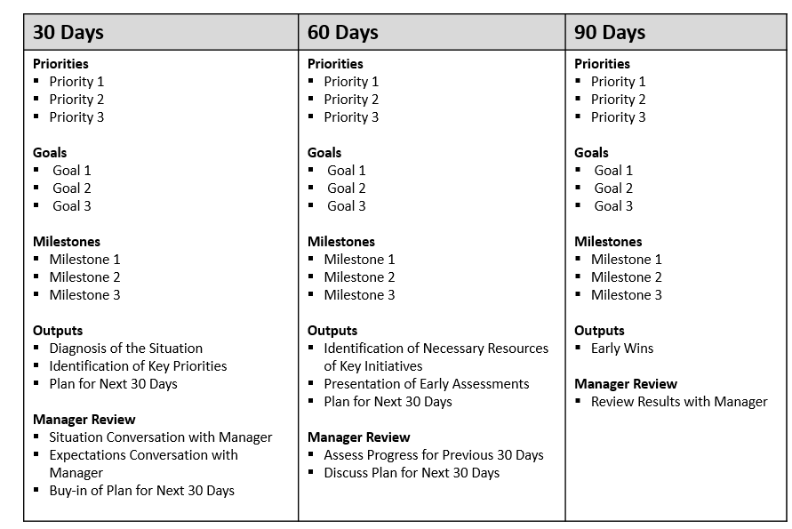 Sample 90 Day Plan For New Job Template