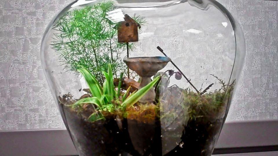 Terrarium Idea Terrariums Miniature Gardens Pinterest