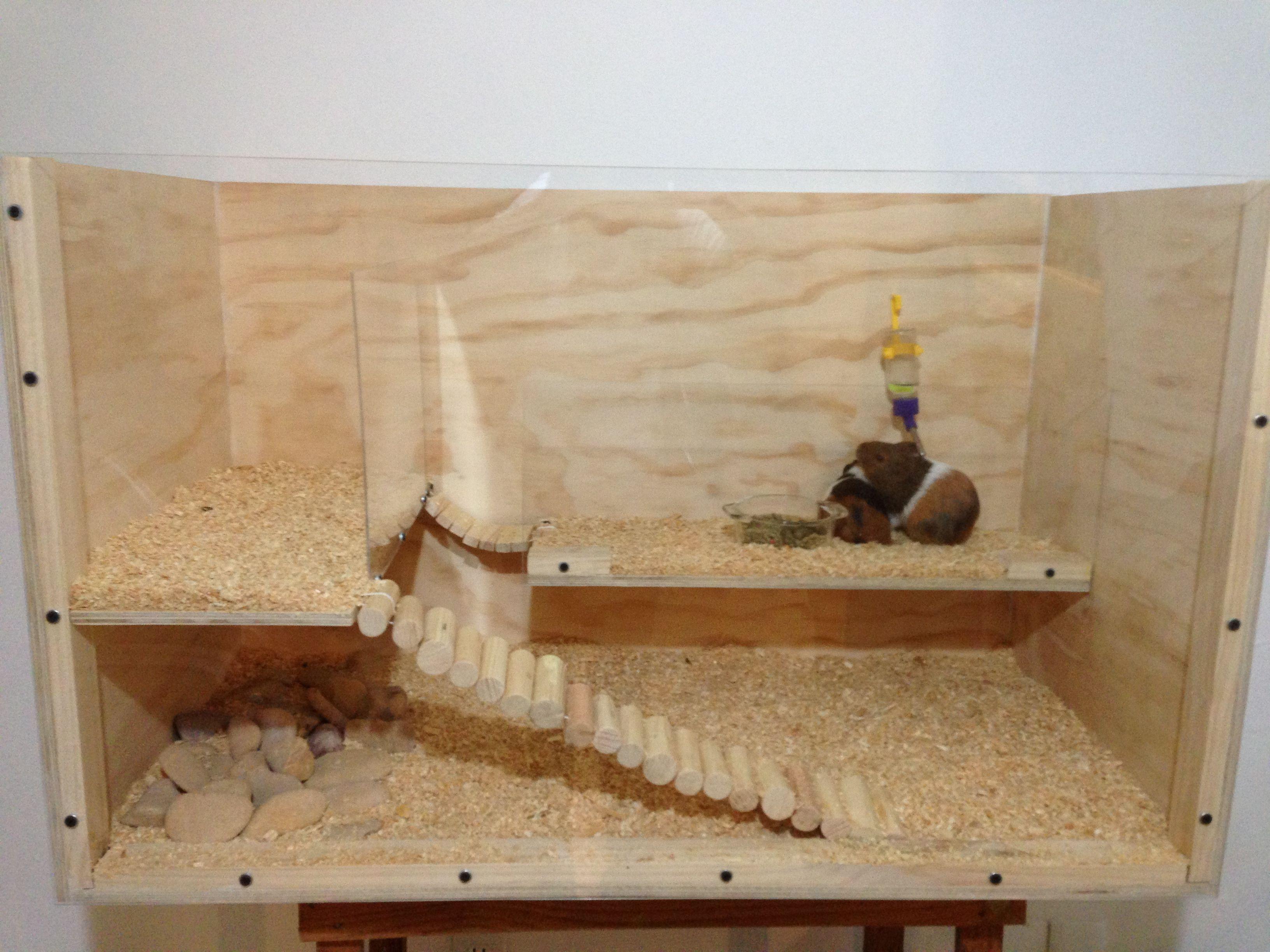 Diy guinea pig 39 s plywood home ella pinterest for Guinea pig homes