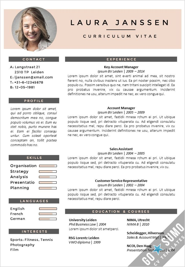 free cv template layout