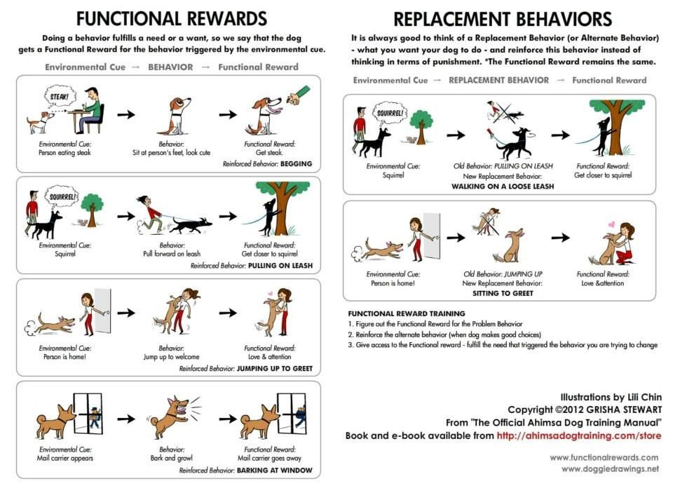 Adult functional behavior plans