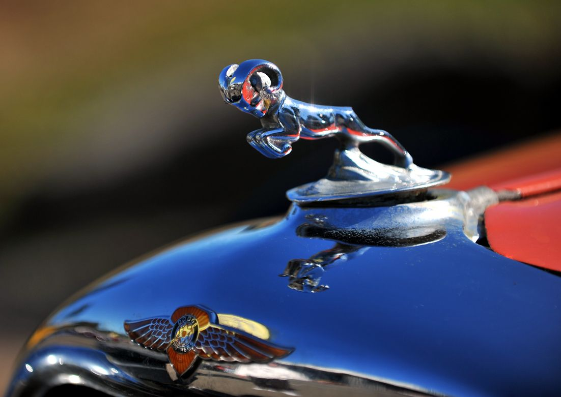 dodge ram eddyf flickr hood ornaments pinterest. Cars Review. Best American Auto & Cars Review