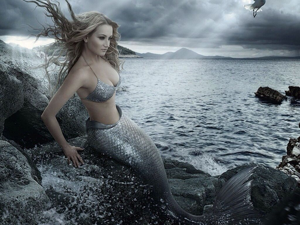 Blonde Hair Mermaid On Rocks Silver Mermaid On Rock