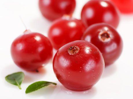 Arándano rojo - bayas o frutos