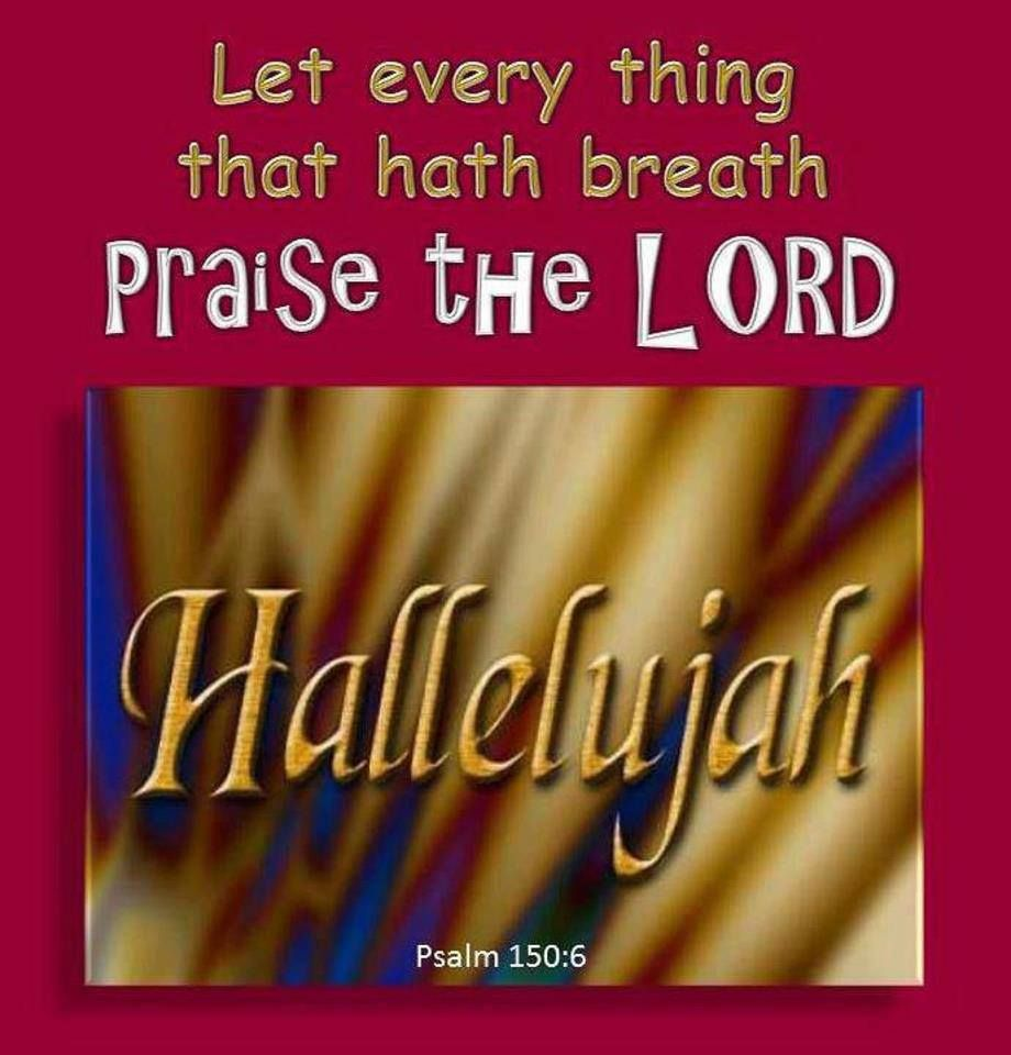 hallelujah jct christian girl personals Free classified ads for personals and everything else find what you are looking for or create your own ad for free.
