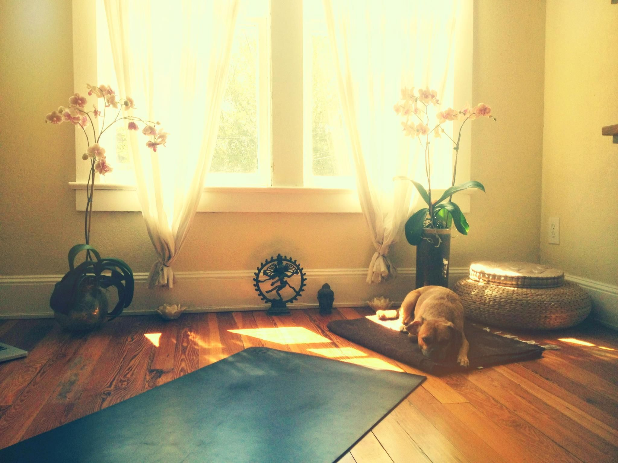 Kathryn budig 39 s yoga room amassing a dream home pinterest for How to make a yoga room