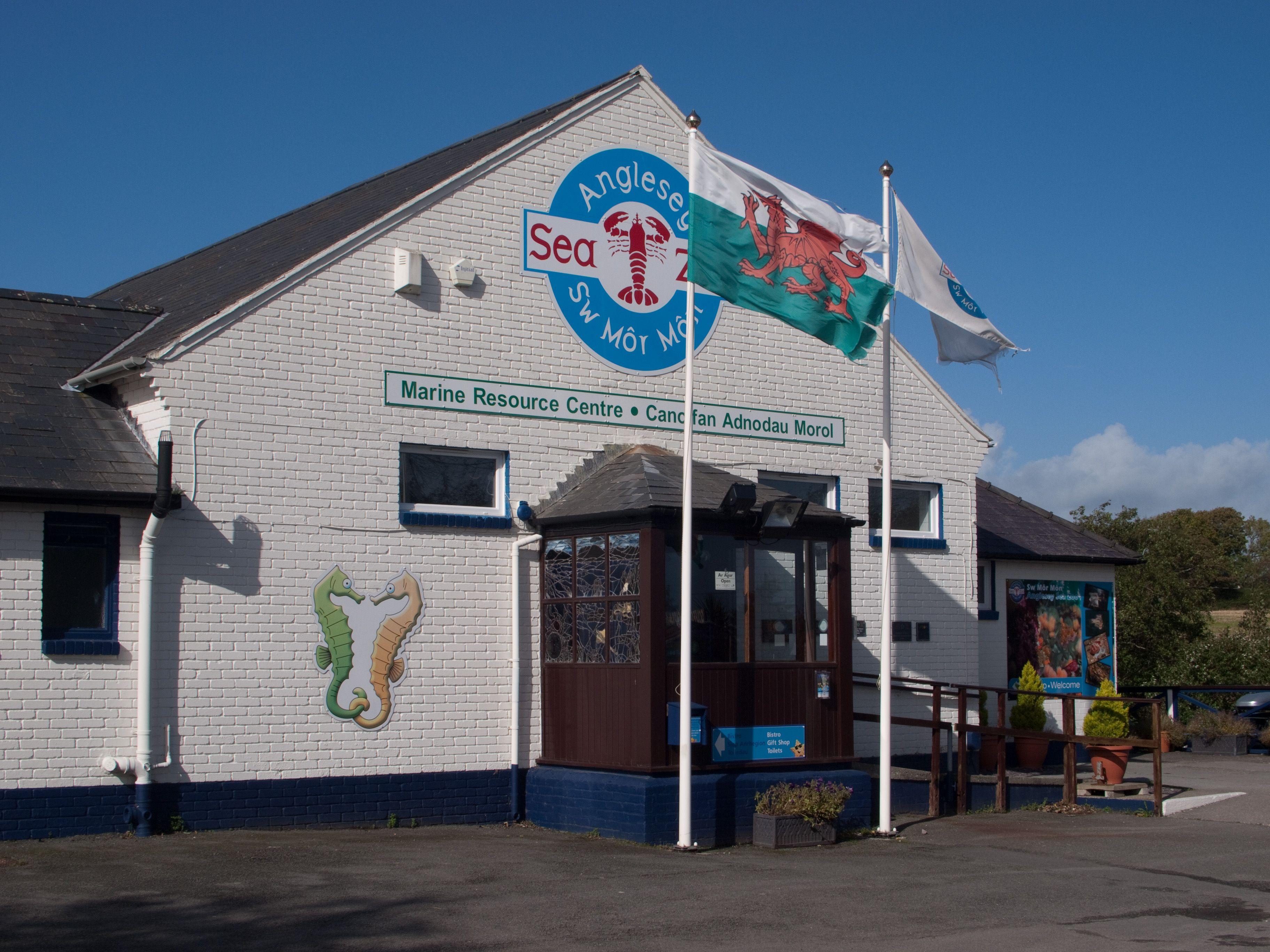 Anglesey Sea Zoo Wales / Cymru Pinterest