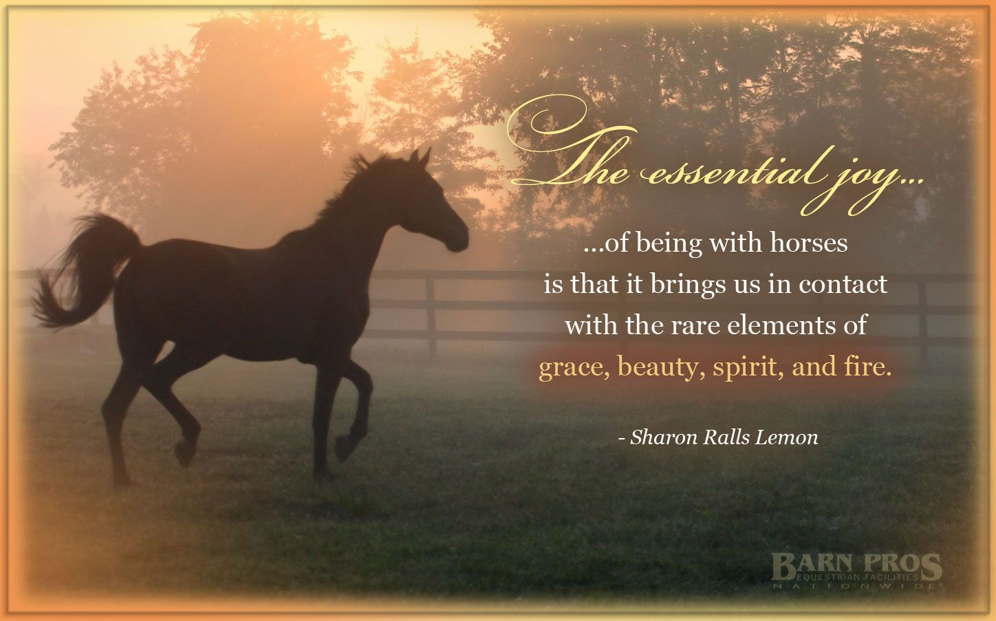 horse lovers quotes quotesgram