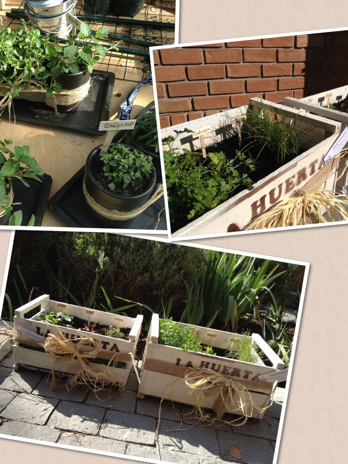 Huerto urbano garden ideas pinterest - Mi huerto urbano ...