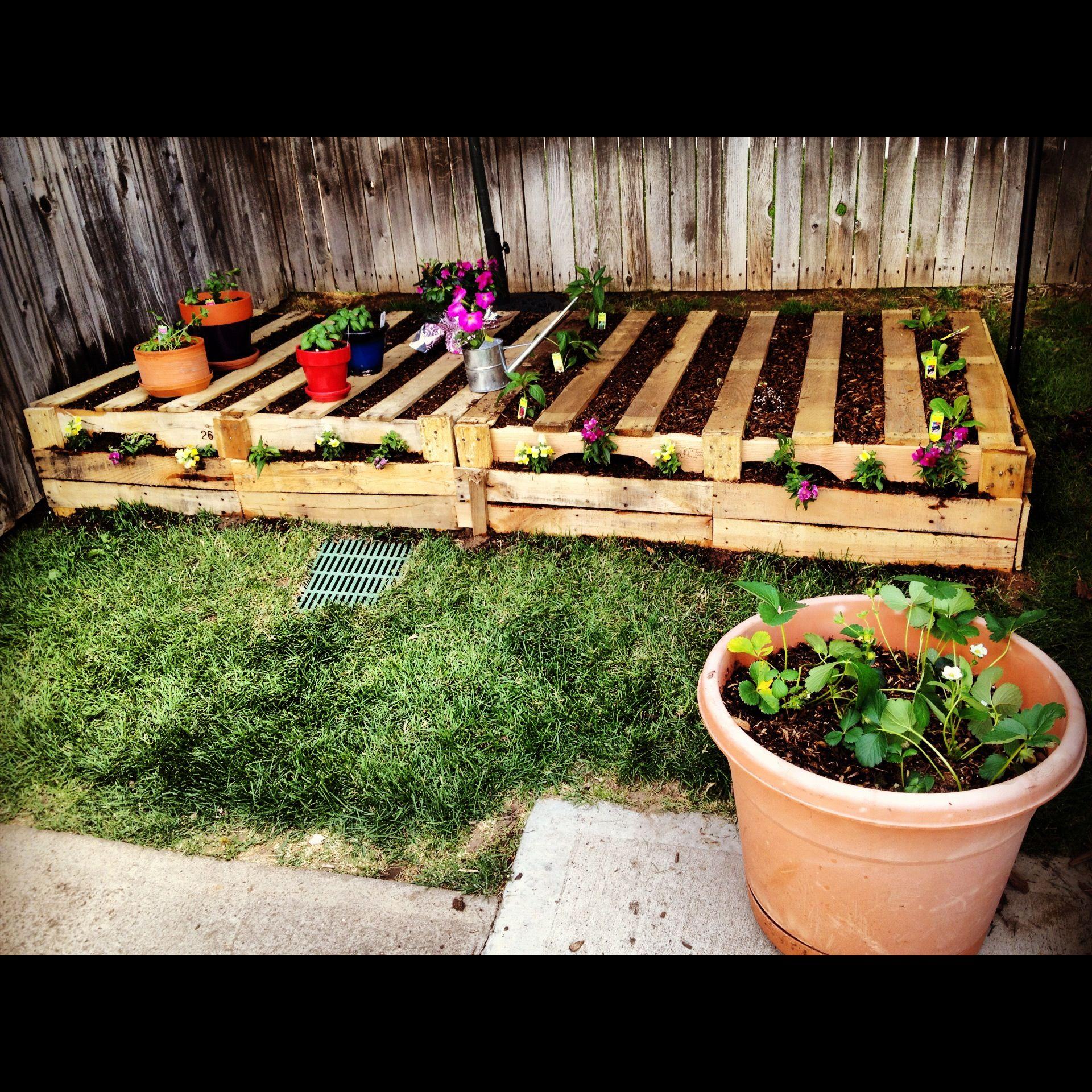 Pallet garden gardening pinterest for Gardening using pallets