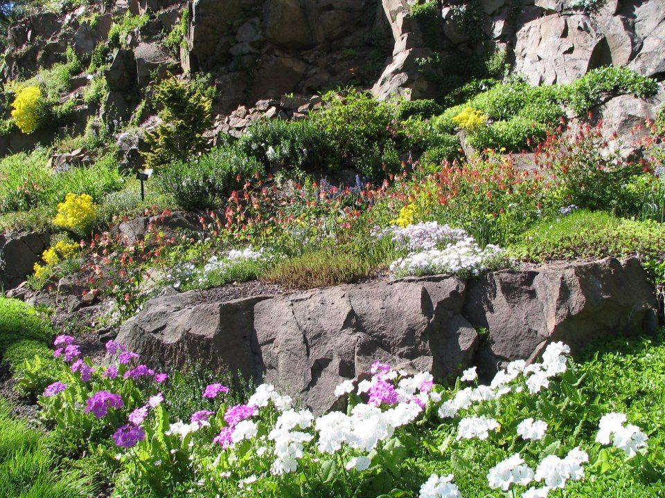 Leonard J Buck Garden Far Hills Spring Flings Pinterest