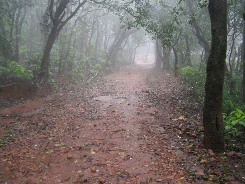 Matheran India  City pictures : Matheran, India | Places I've Been To | Pinterest