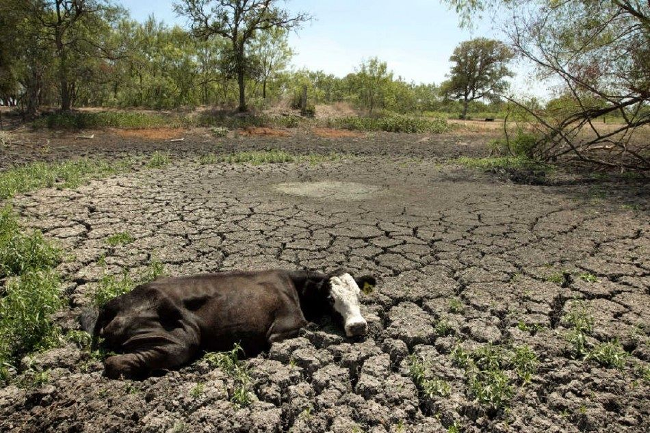 how to solve drought in australia