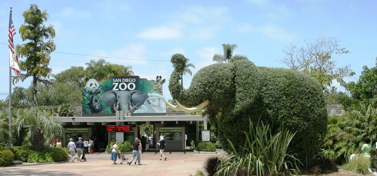 Visita al zoo de San Diego
