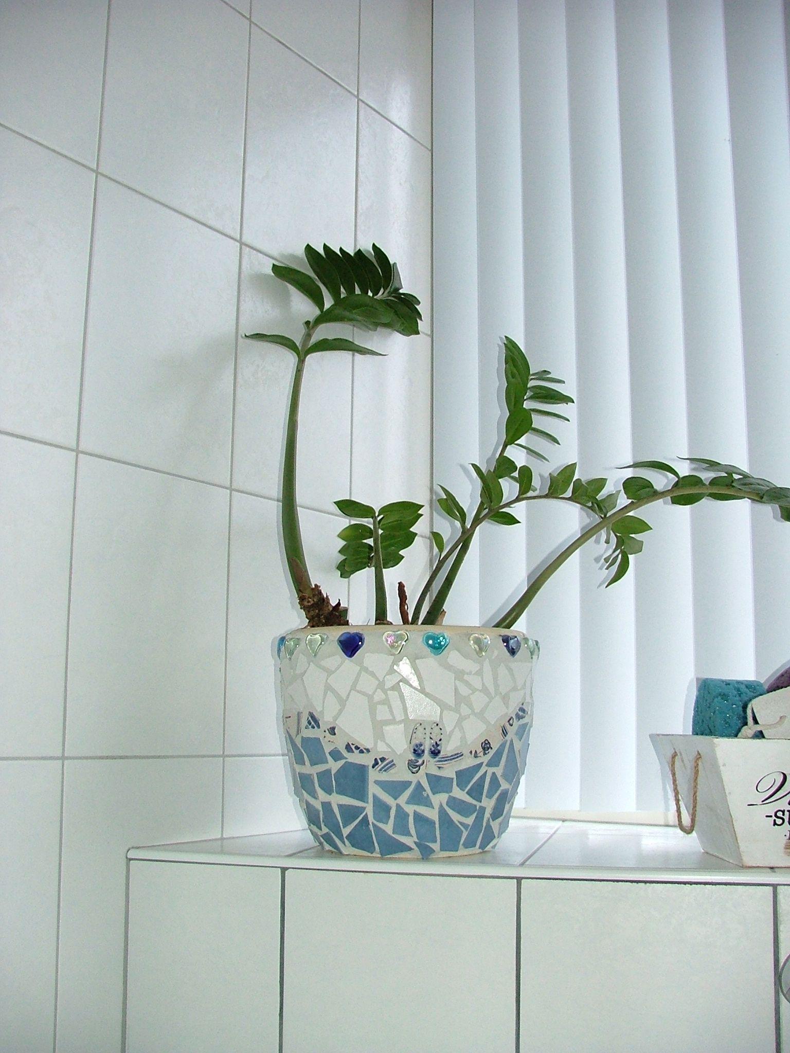 Mozaiek Pot For Plant In Bathroom Mosaics Pinterest