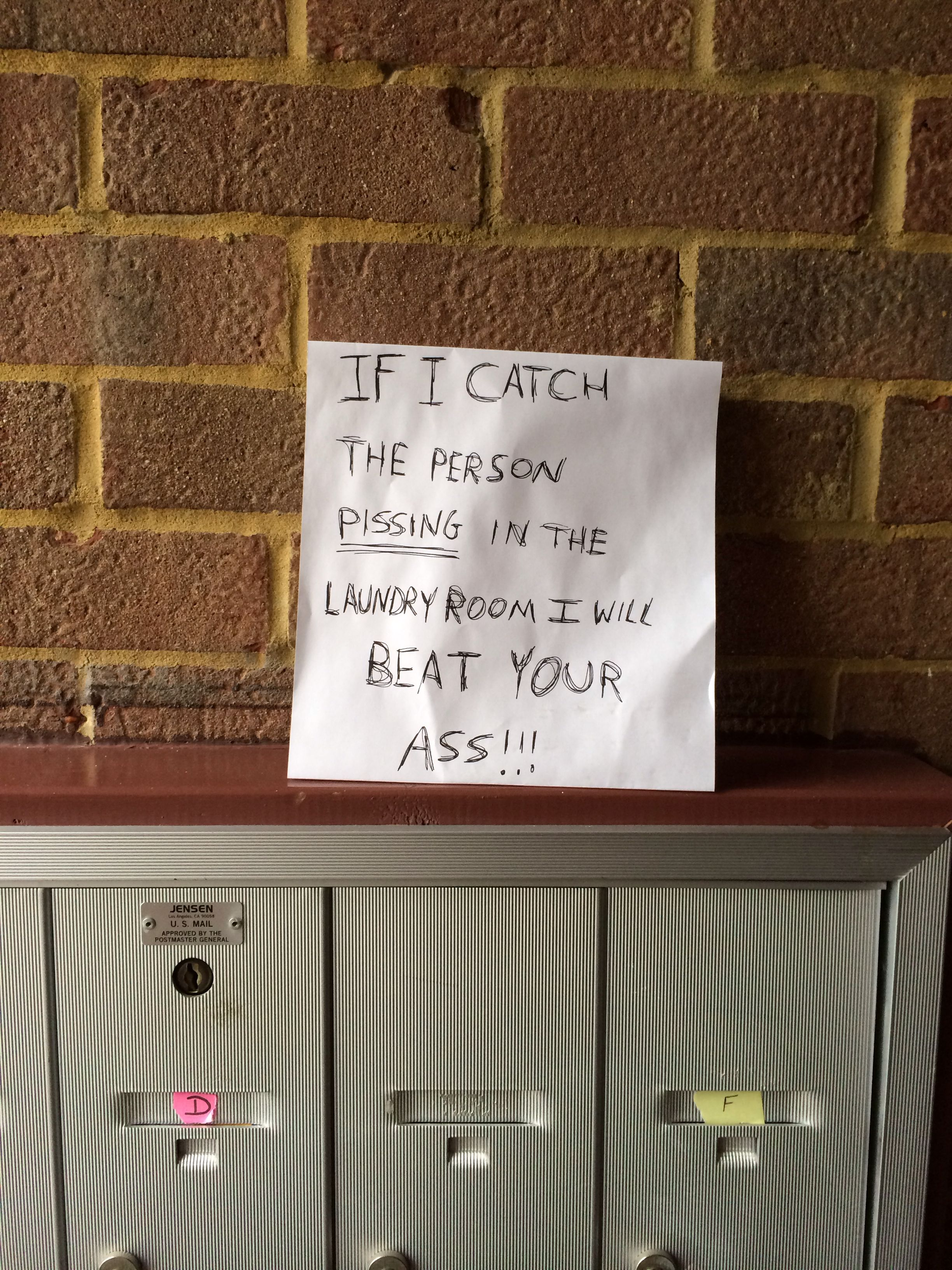 Funny Apartment Funny Things Pinterest
