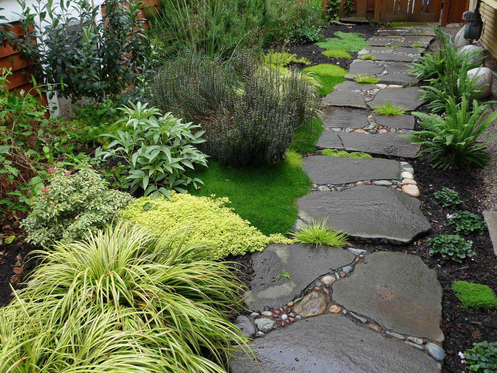 Walkway garden ideas pinterest for Plants for walkway landscaping ideas