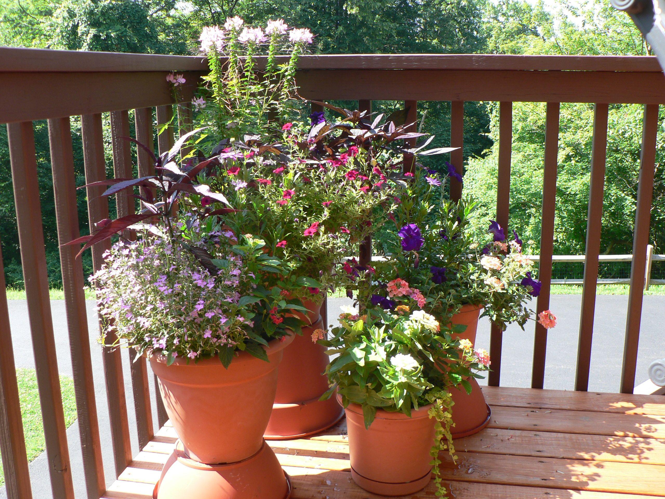 39 13 summer deck pots patio deck ideas pinterest for Deck ideas pinterest