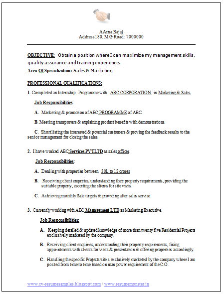 Sample Extracurricular Activities Resume