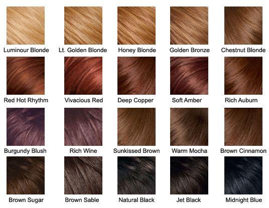 Hair Color Palette H A I R Pinterest