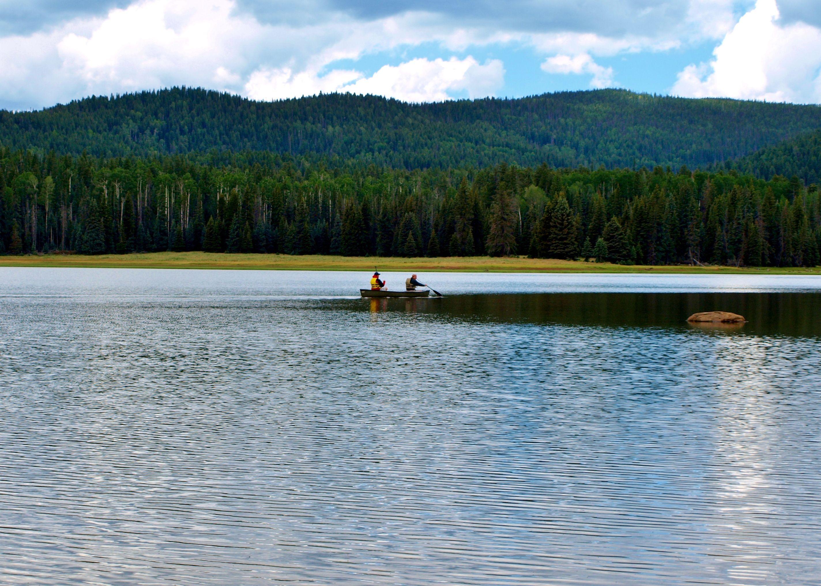 Big lake arizona places i love pinterest for Fishing spots in arizona