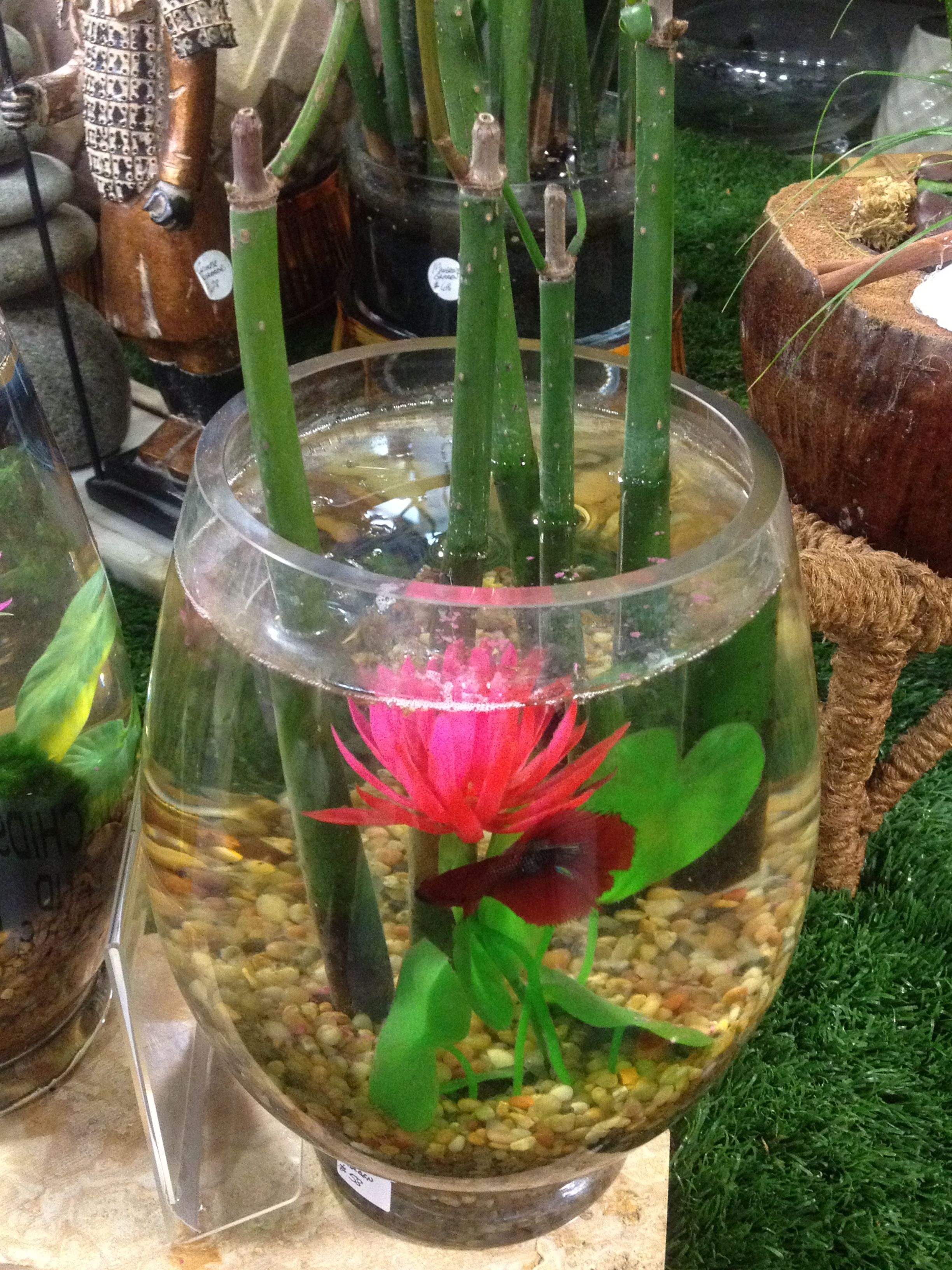 Share - Cool ideas for a fish tank ...