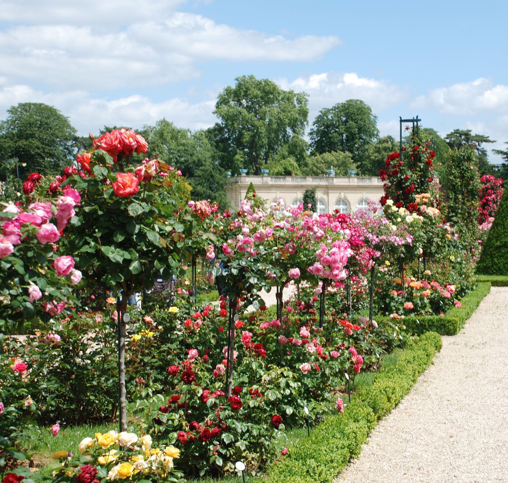 Jardin de bagatelle bois de boulogne la france paris for Bagatelle jardin