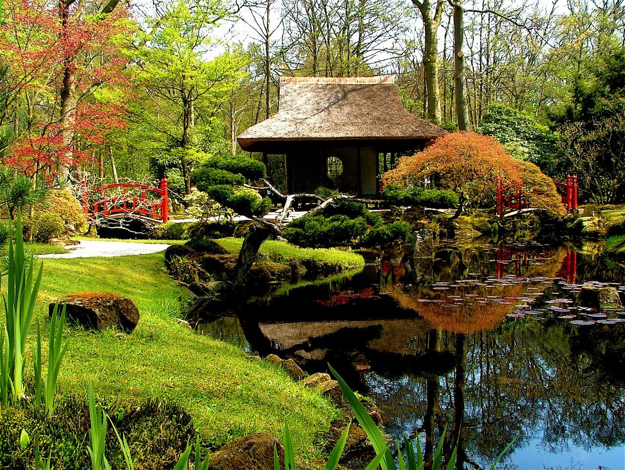 Beautiful japanese garden garden water gardens pinterest for Japanese garden architecture
