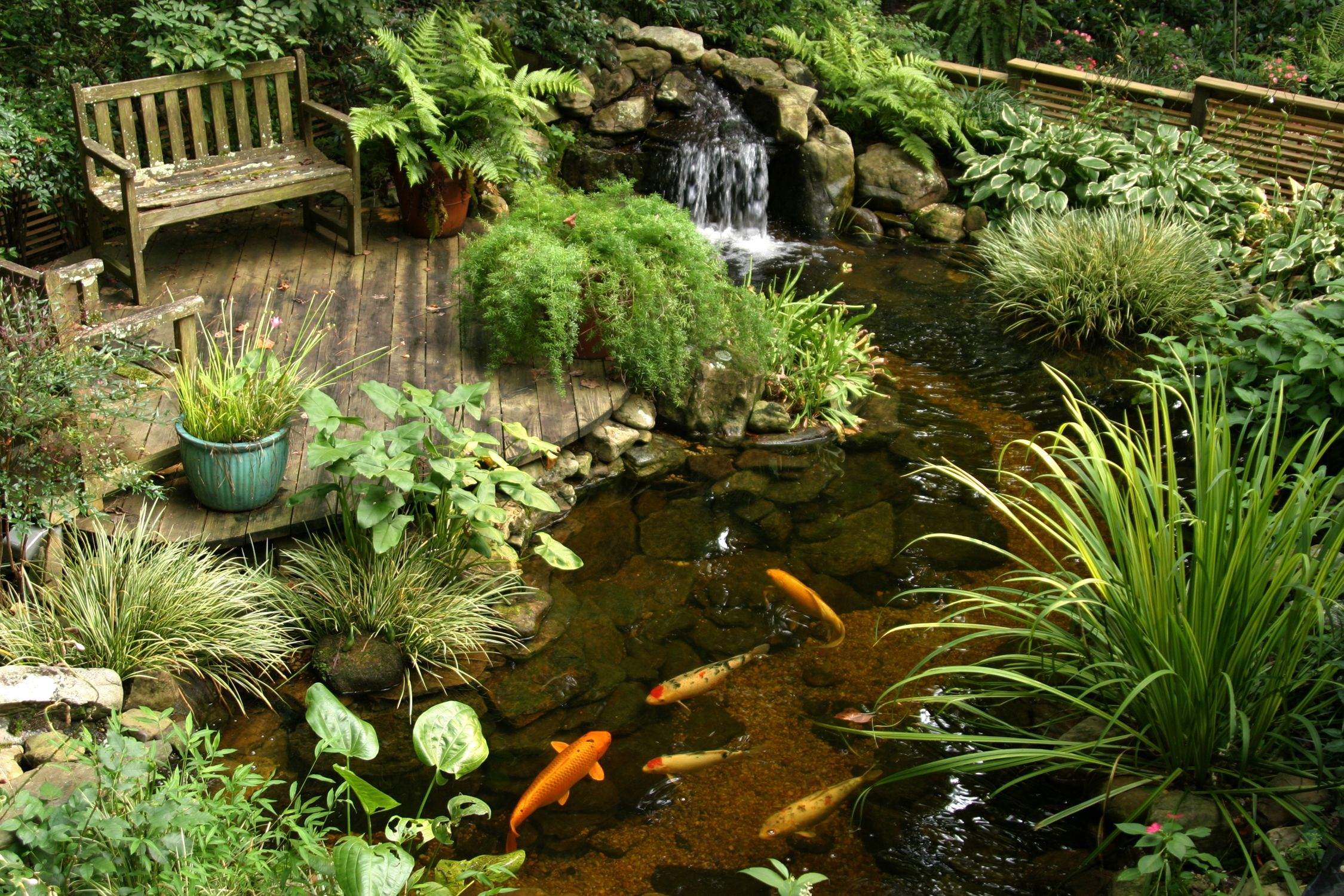 Декоративные водоемы ландшафтный дизайн