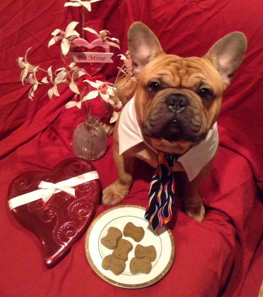 valentine day french embassy