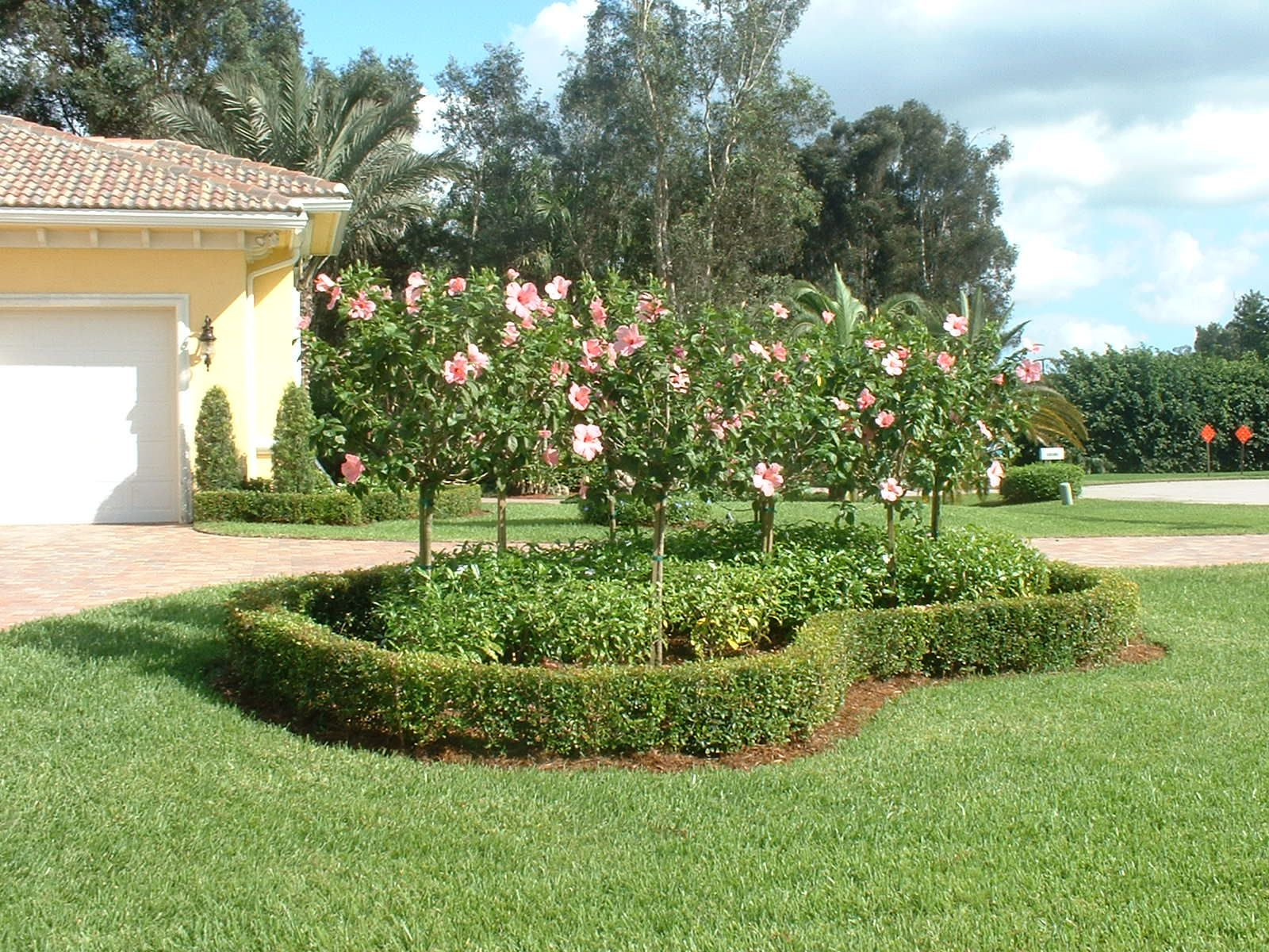 Florida landscaping ideas for backyard ztil news Florida landscape design ideas
