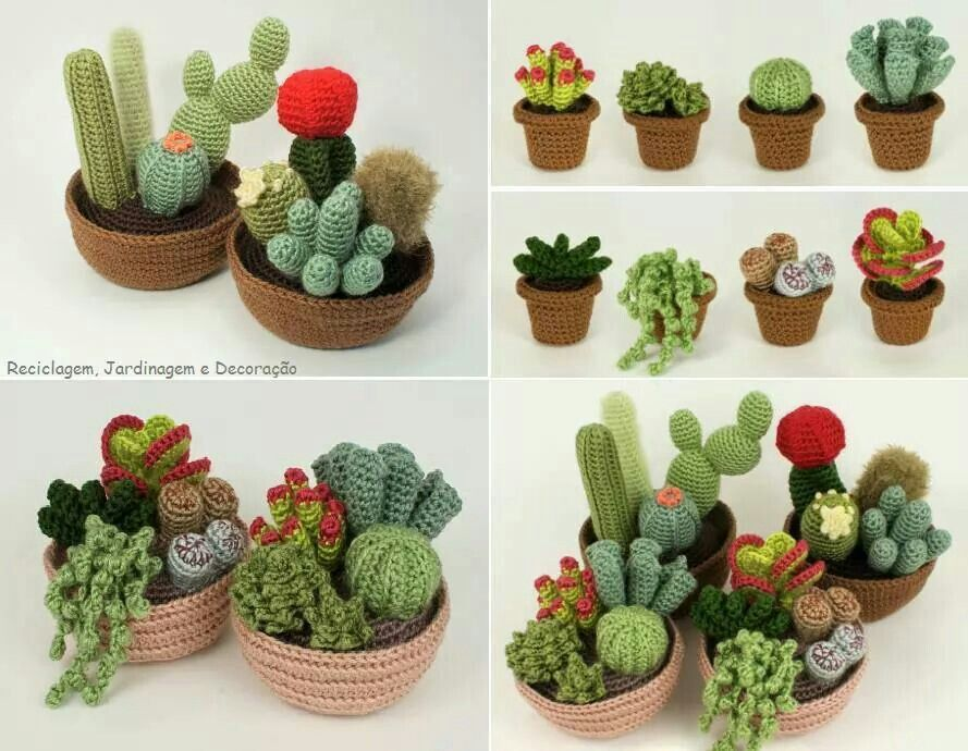Cactus Fantasia Amigurumi Tejidos A Crochet : Cactus crochet Crochet Pinterest