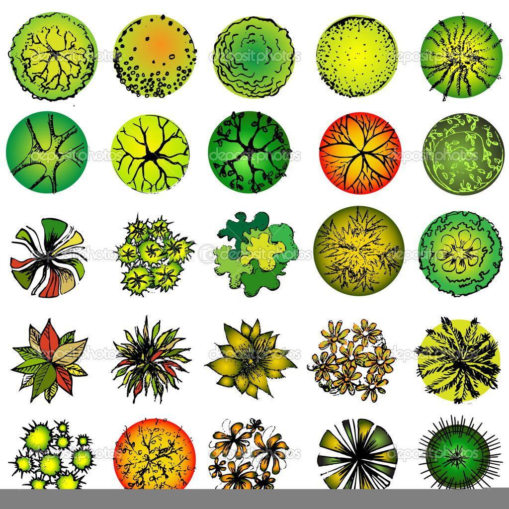 Схема изображения цветов деревьев