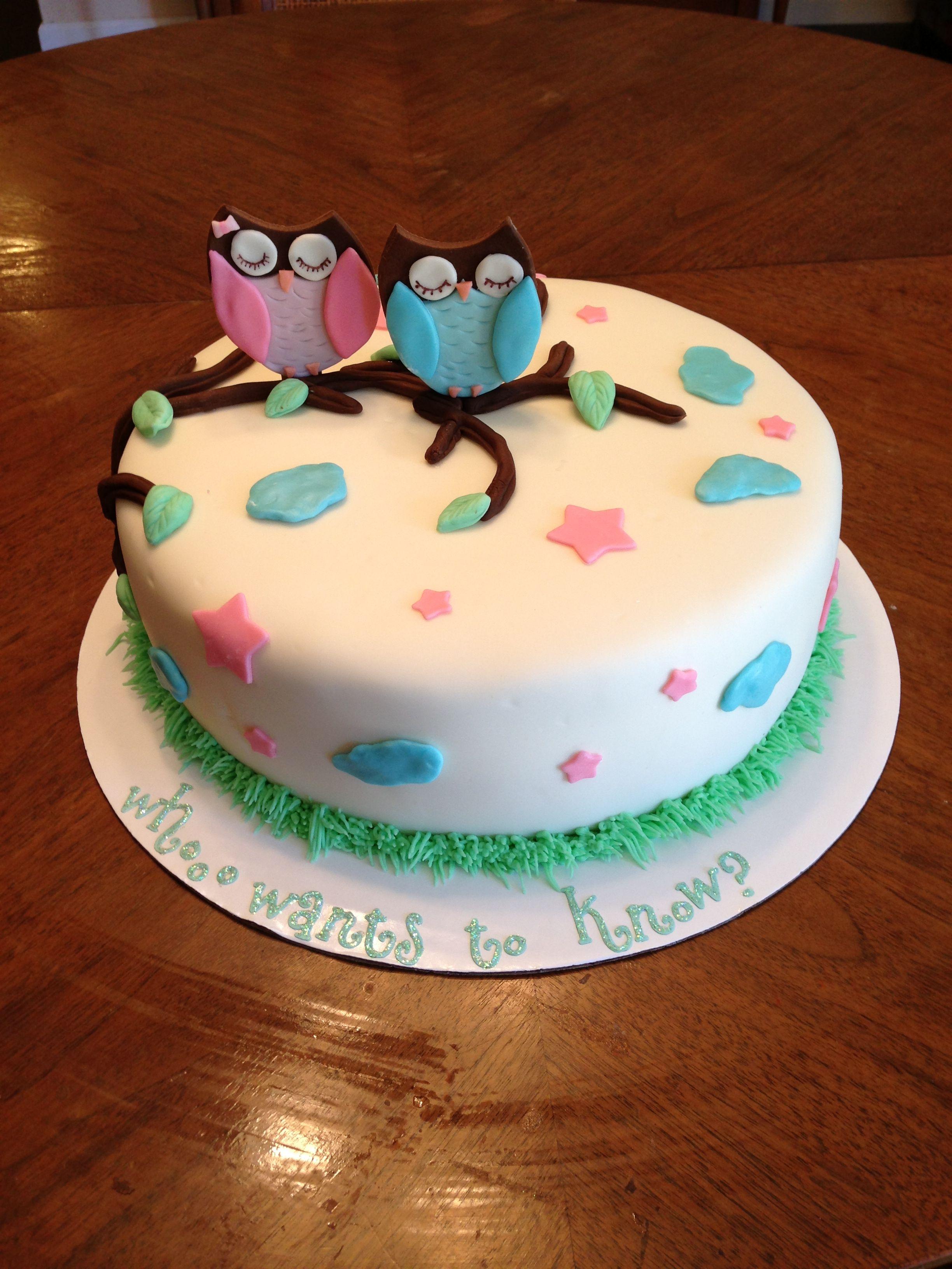 Owl Gender Reveal Cake | Cake decorating ideas | Pinterest