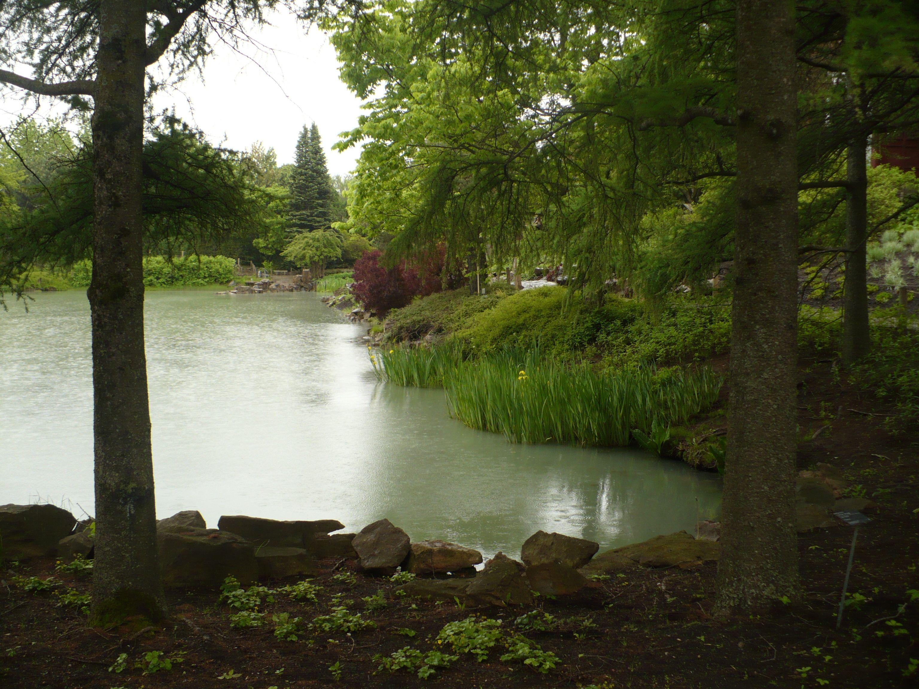 Jardin de chine jardin bot mtl jardin botanique for Botanique jardin