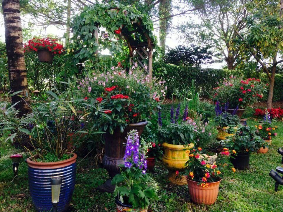 Butterfly Hummingbird Garden Garden Pinterest