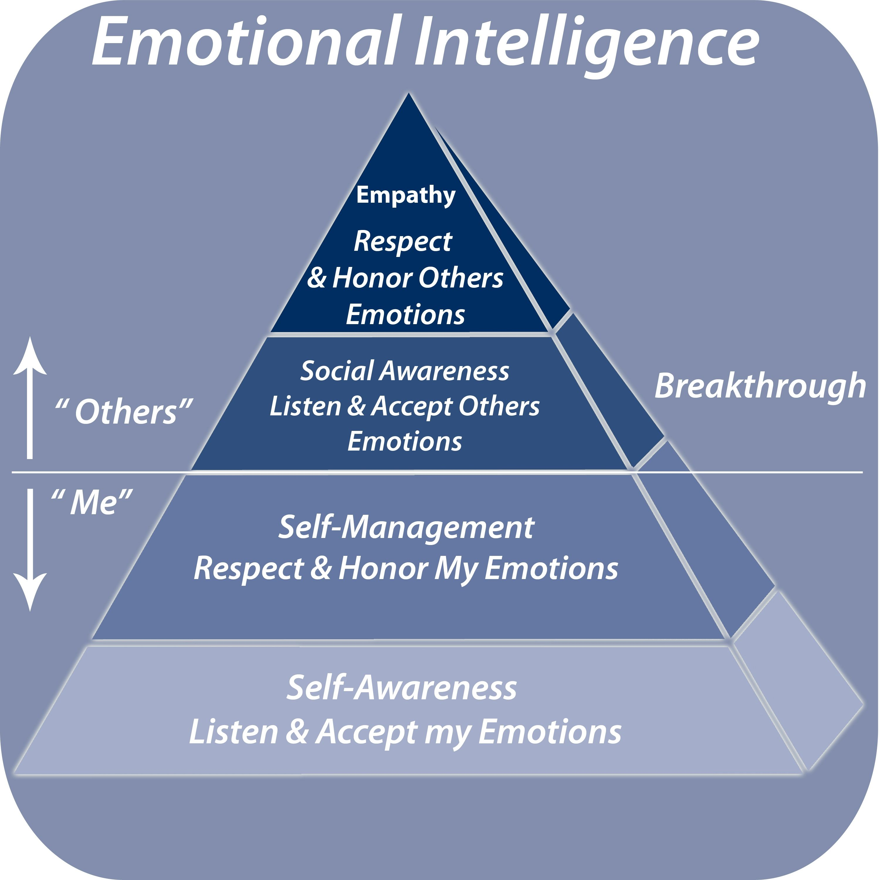 write an essay on emotional intelligence Emotional intelligence psychology essay (creative writing jobs nsw) posted by in uncategorized 0 comments 1 week into college and i already have 2 essays.