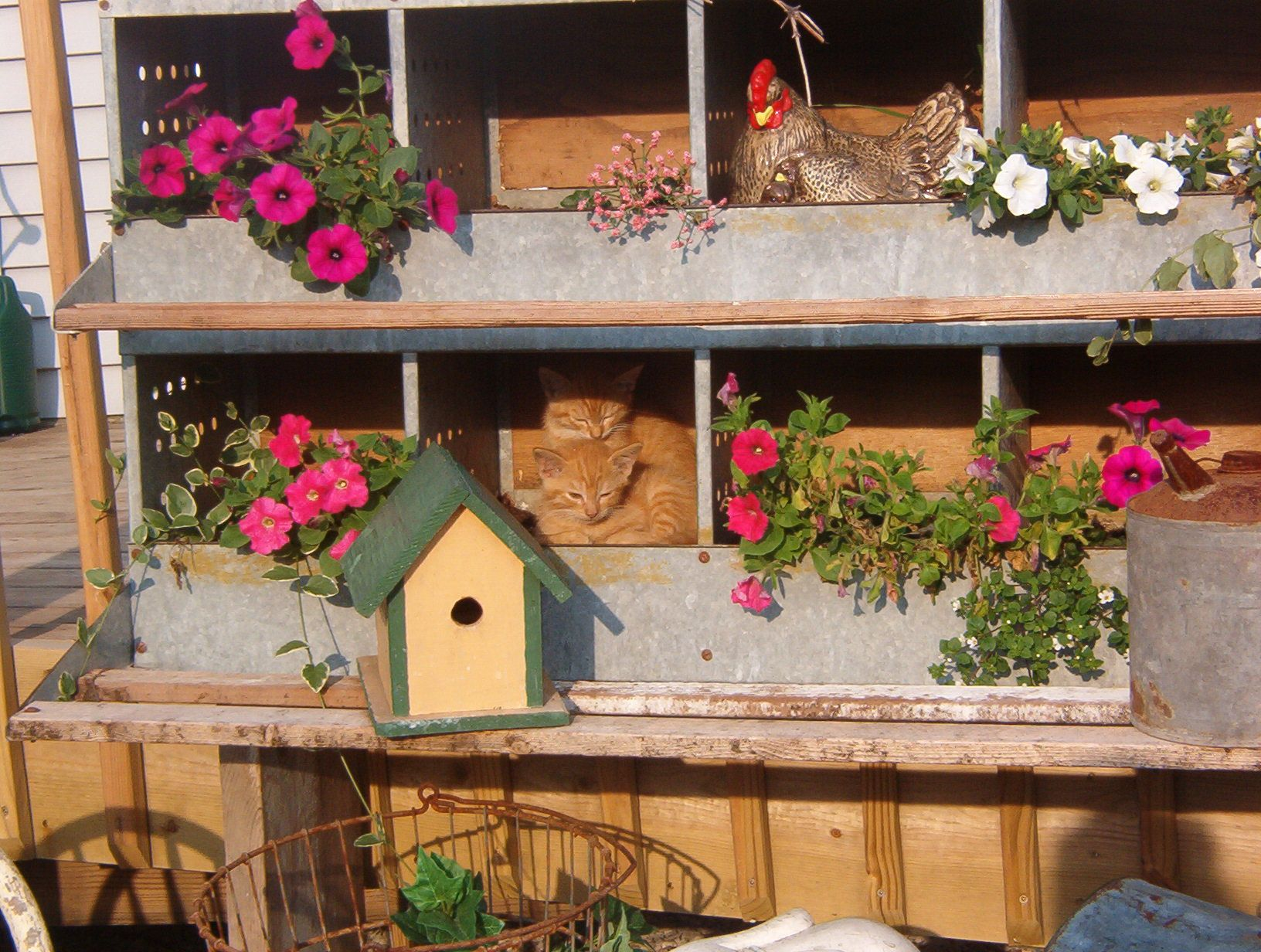 Chicken Nesting Box Container Creations Pinterest