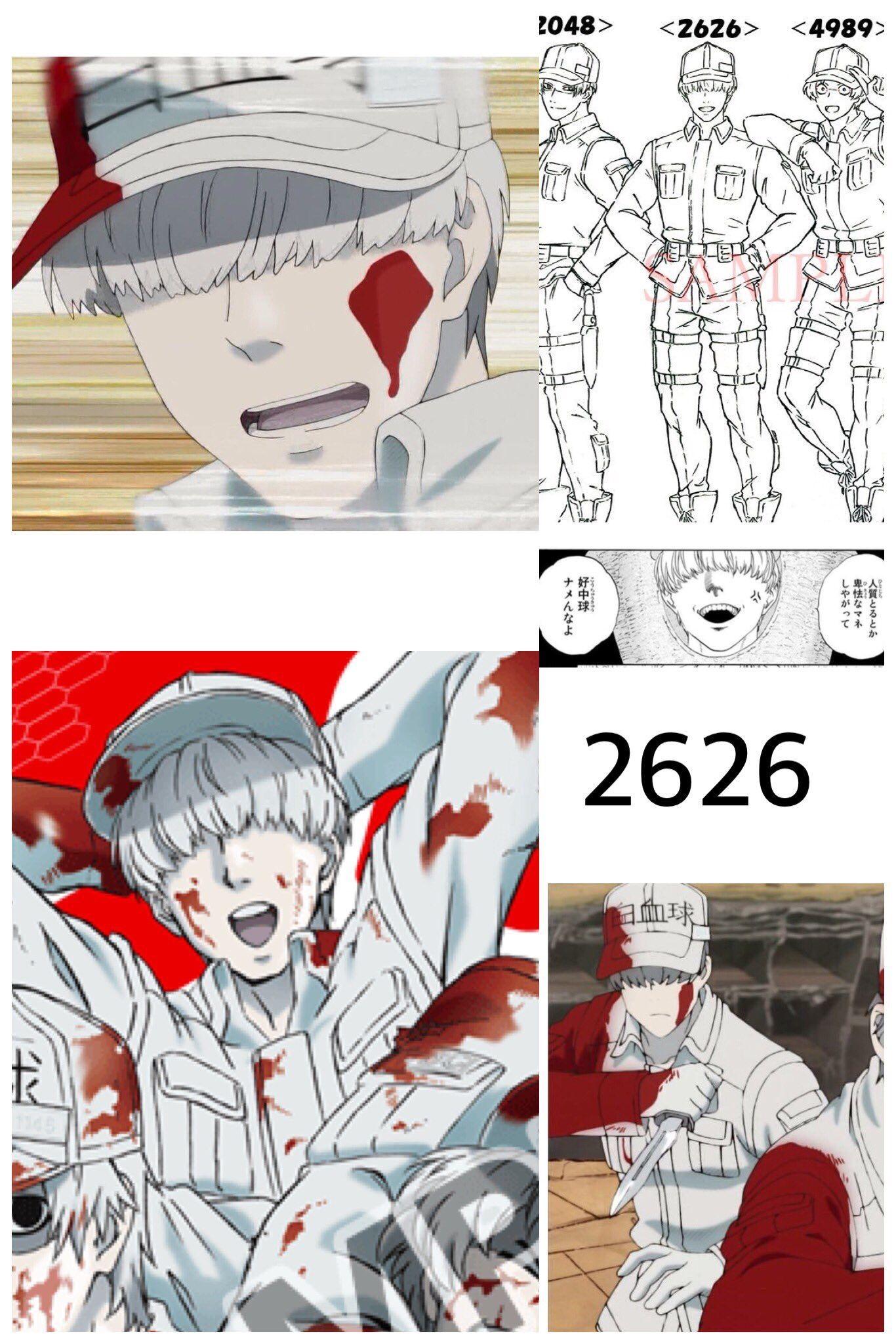 はたらく細胞 白血球 2626