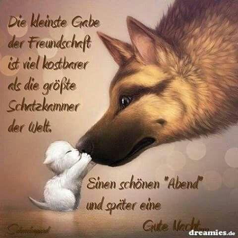 Schönen Abend und gute Nacht. | Goodnight friends | Good night ...