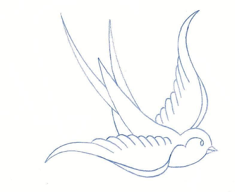 Swallow Tattoo Line Drawing : Sparrow outline tattoos pinterest