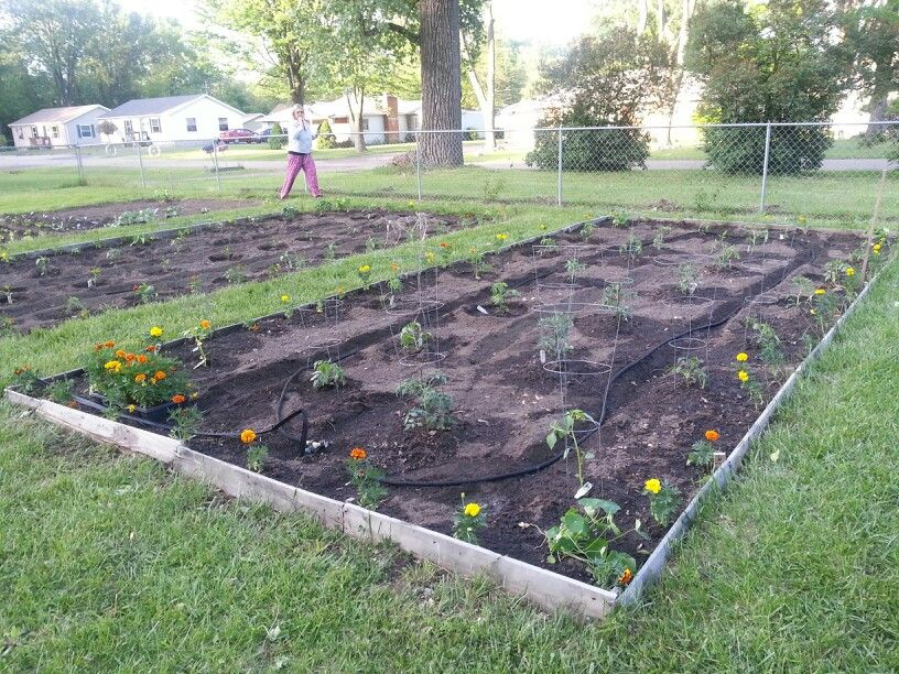 garden plot 3 community garden ideas pinterest 816x612 in 242 2kb