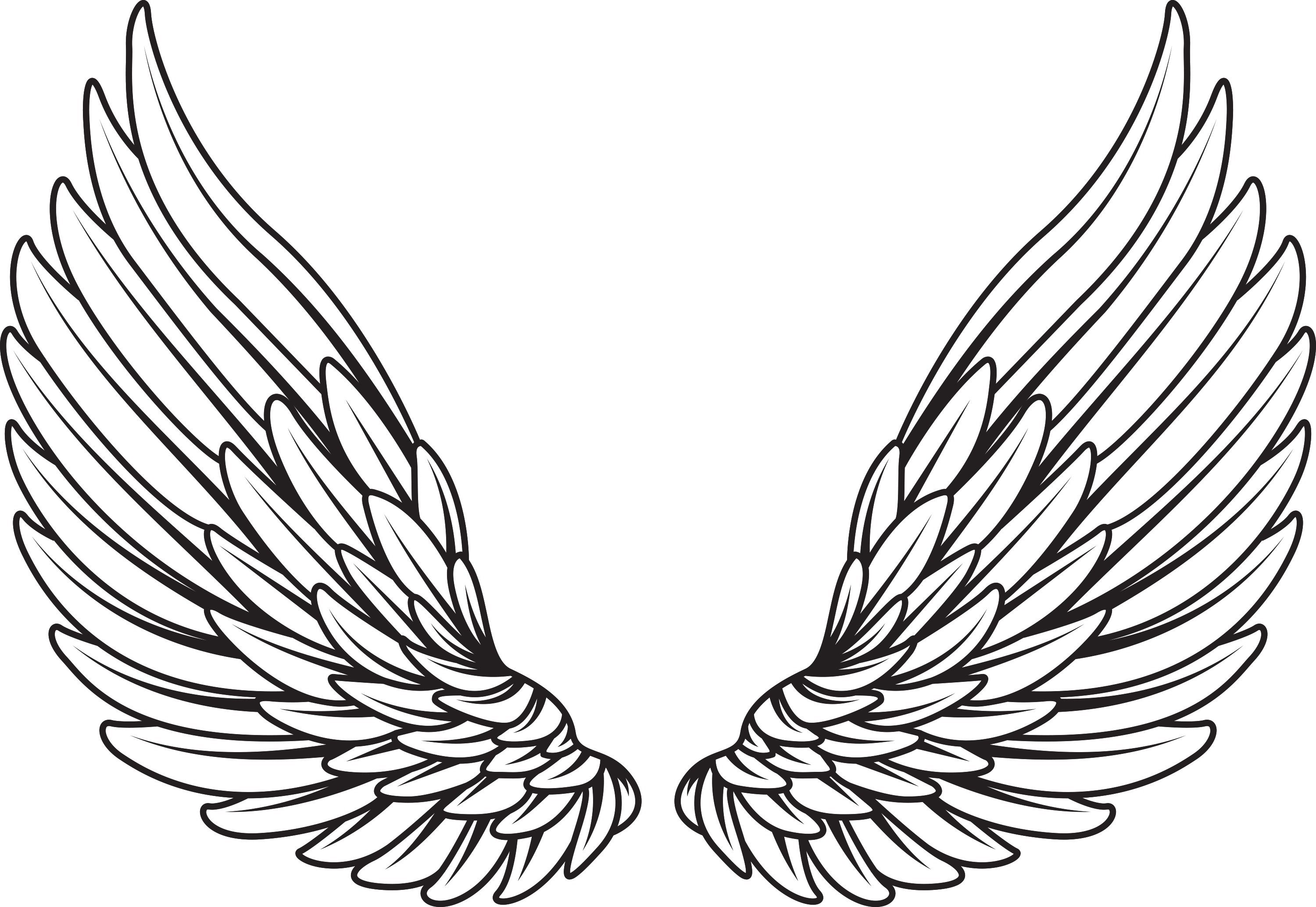 Awesome vector angel wings images